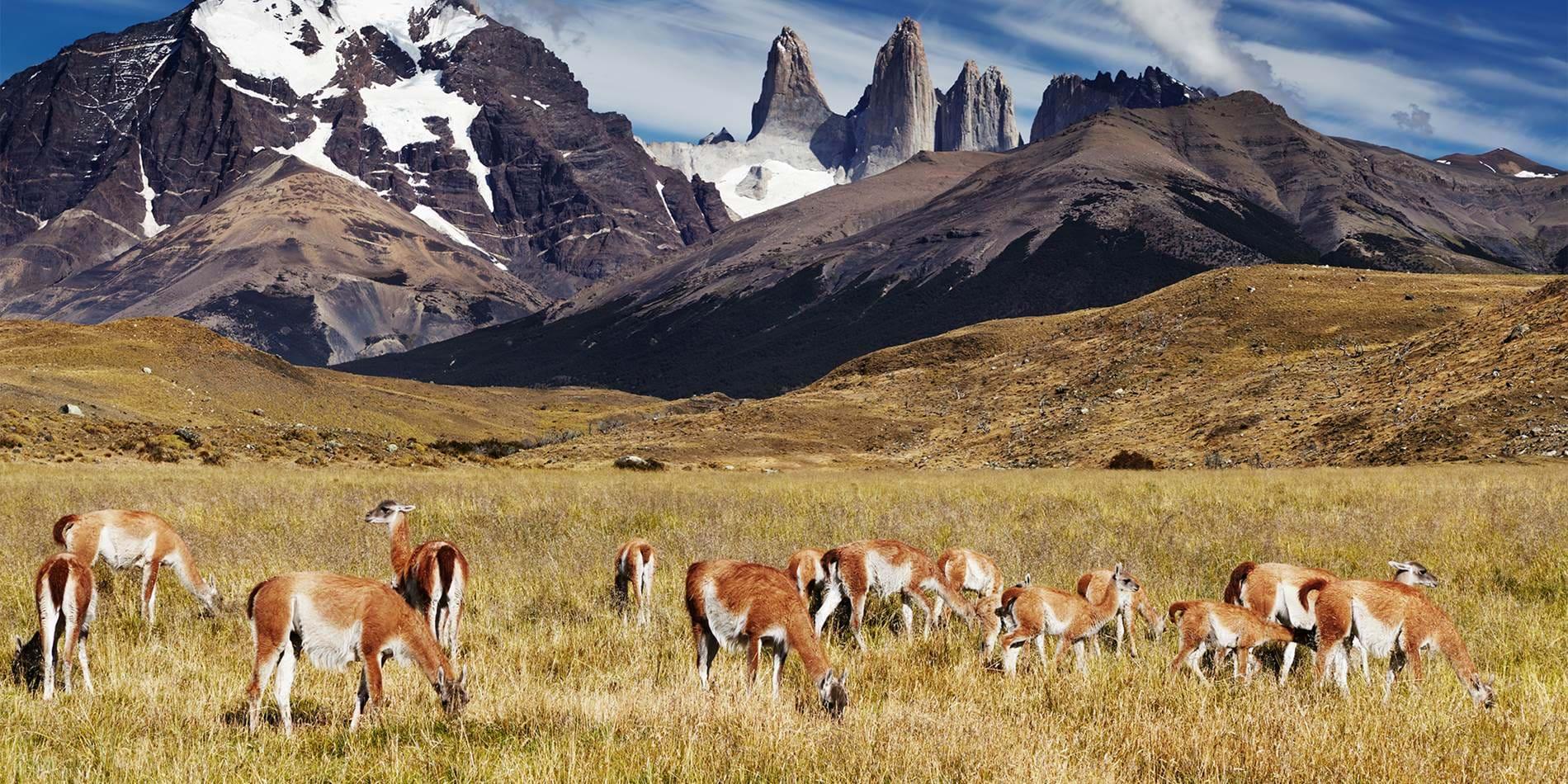 Hangmat Zuid Amerika.5 Plekken Die Je Gezien Moet Hebben In Zuid Amerika Kilroy