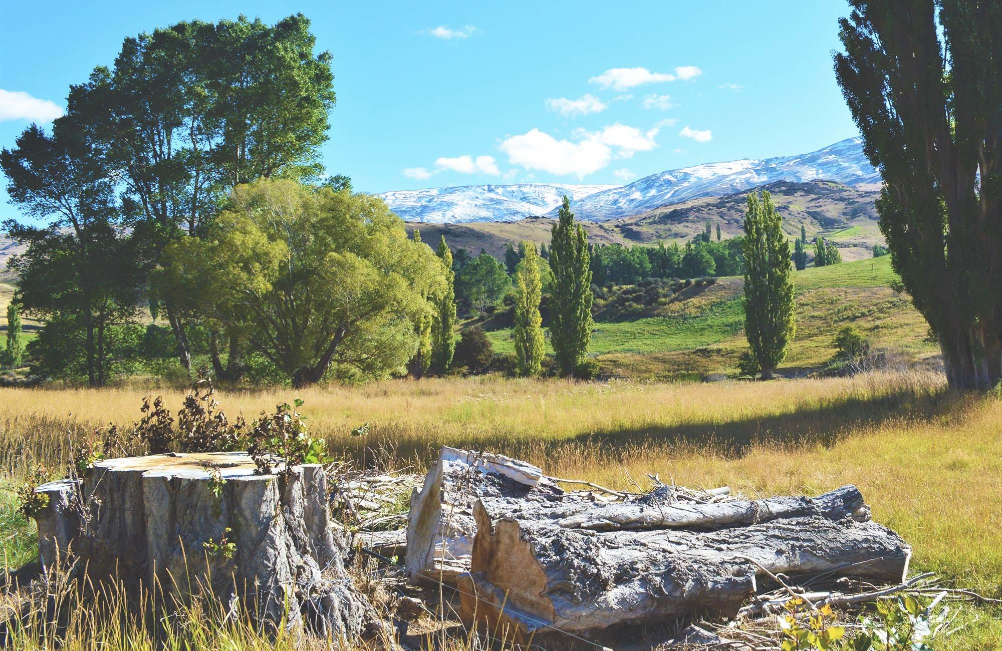 southern-island-central-otago-new-zealand-cover