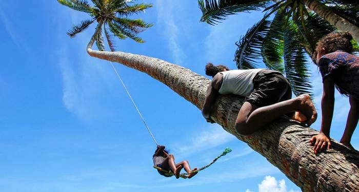 taveuni-island-fiji-kids-climbing-palm-tree-cover