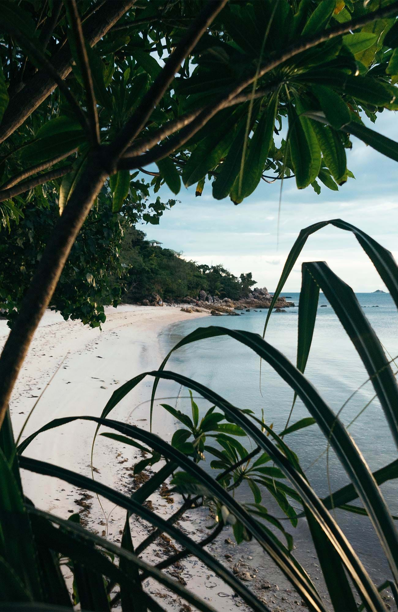koh-phangan-thailand-beach-lush-jungle-sidebar